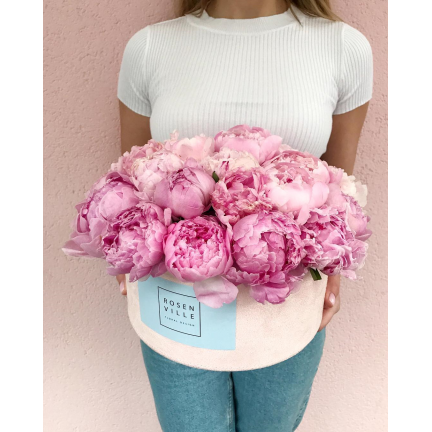 Розовая мечта